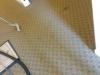 Best Carpet Cleaners - Bethlehem Apartment 3