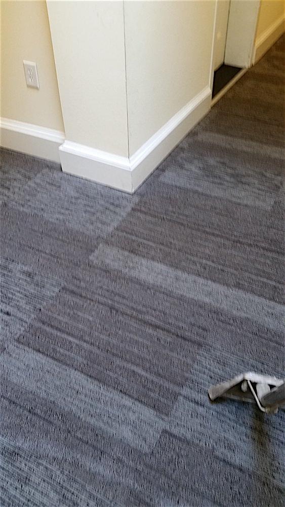 Philadelphia apartment carpet cleaning gentle clean for Philadelphia flooring