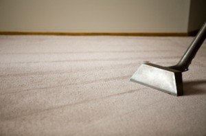 Gentle Clean Home Carpet Cleaning