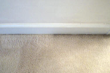 How To Prevent Filtration Lines On Your Carpet Gentle