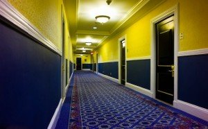 Clean Hallway - Gentle Clean Carpet