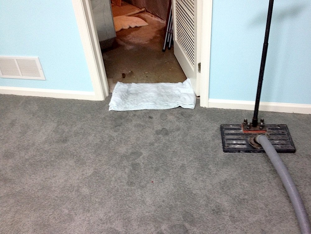 Wet Basement Carpet in Dresher & How 10 Minutes Per Year Can Prevent Wet Basement Carpet | Gentle Clean